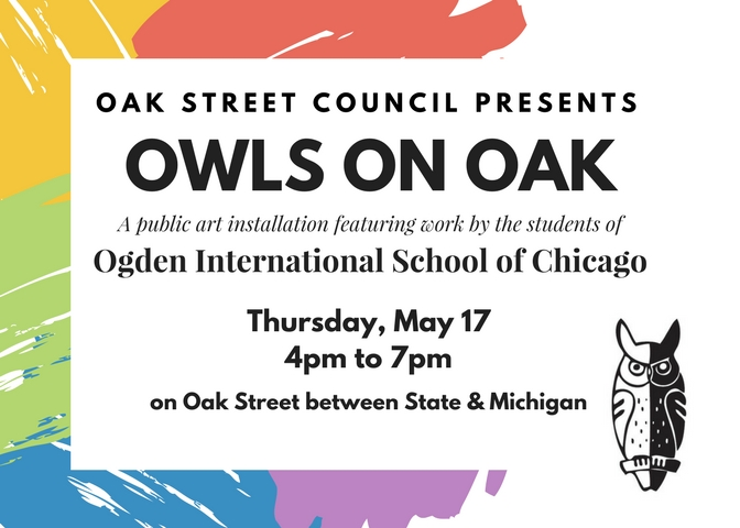 Owls on Oak Street Chicago
